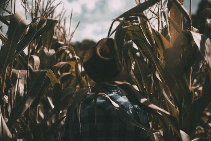 farmer field man Photo - Visual Hunt