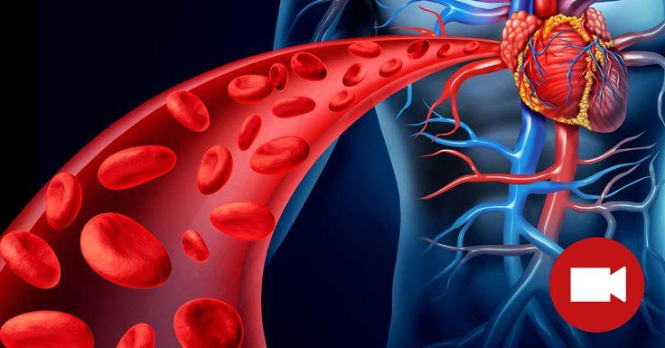 Кровь — это не орган, который болит, когда что-то не в порядке! Признакамитого, что в крови накопились вредные вещества, токсины может быть вялость, сонливость, тусклая кожа. Заботьтесь о себе, чтоб сохранить хорошее самочувствие и здоровье! Применяйте наши советы и БУДЕТЕ ЗДОРОВЫ! Для достижения оптимального самочувствия одним из самых важных условий является «чистая» кровь, которая насыщает