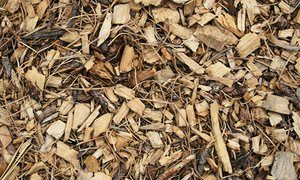 How to turn wood chips into a great compost heap | Alys Fowler | Life and style | The Guardian