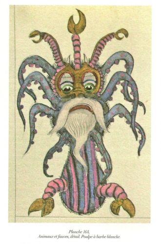 Josep Baqué, Planche 164, Poulpe à barbe blanche, reproduit dans Le Correspondancier n°1