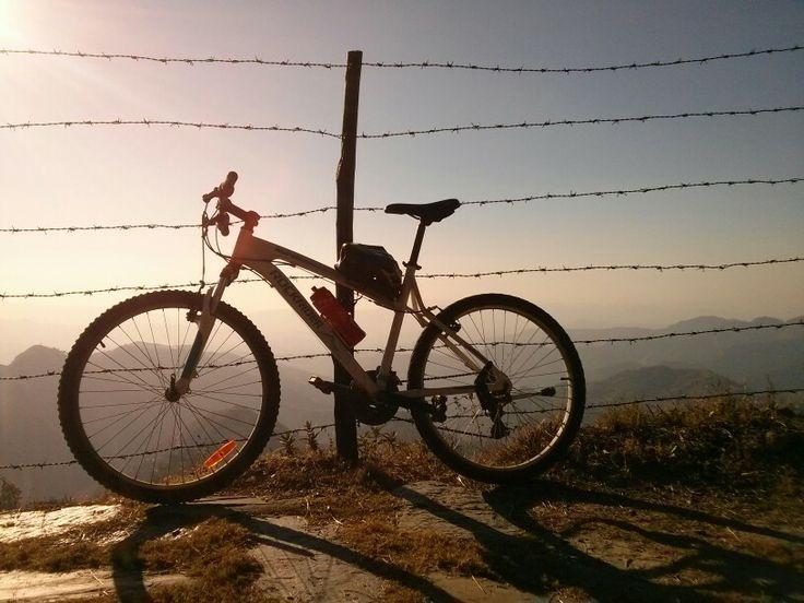 Through the dusky trails