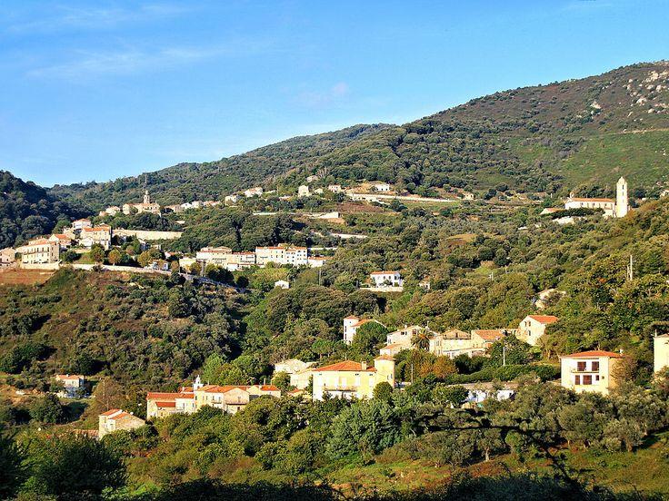 Region de L'Alta-Rocca - Olmiccia dominé par Ste-Lucie-de-Tallano -  Olmiccia est une commune française située dans le département de la Corse-du-Sud.Le village appartient à la microrégion du Tallano, dans l'ouest de l'Alta Rocca.