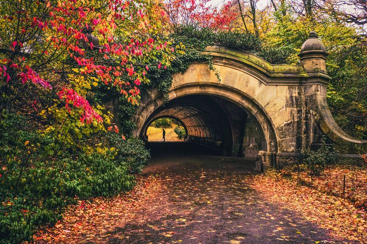 Brooklyn. Autumn in Prospect Park. New York City Autumn. Fall foliage in Prospect Park, Brooklyn, New York City.