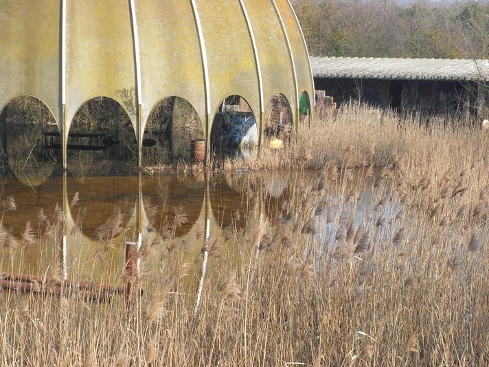 Disco Woodpecker, Milano Marittima, Ravenna, Italy | rethink the abandoned world