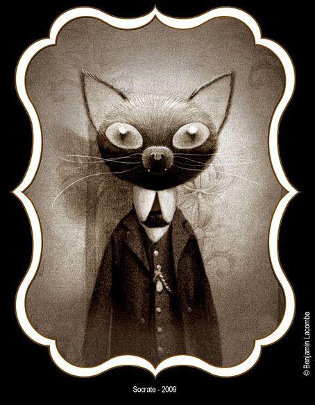 """Socrate, le chat de Lisbeth - illustration extraite du livre """"la petite sorcière"""" de Benjamin Lacombe (1982) illustrateur français . Il vit et travaille à Paris."""