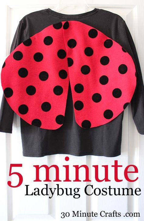 You can whip up this quick and easy no-sew LadyBug Costume in just 5 minutes with some felt and safety pins.
