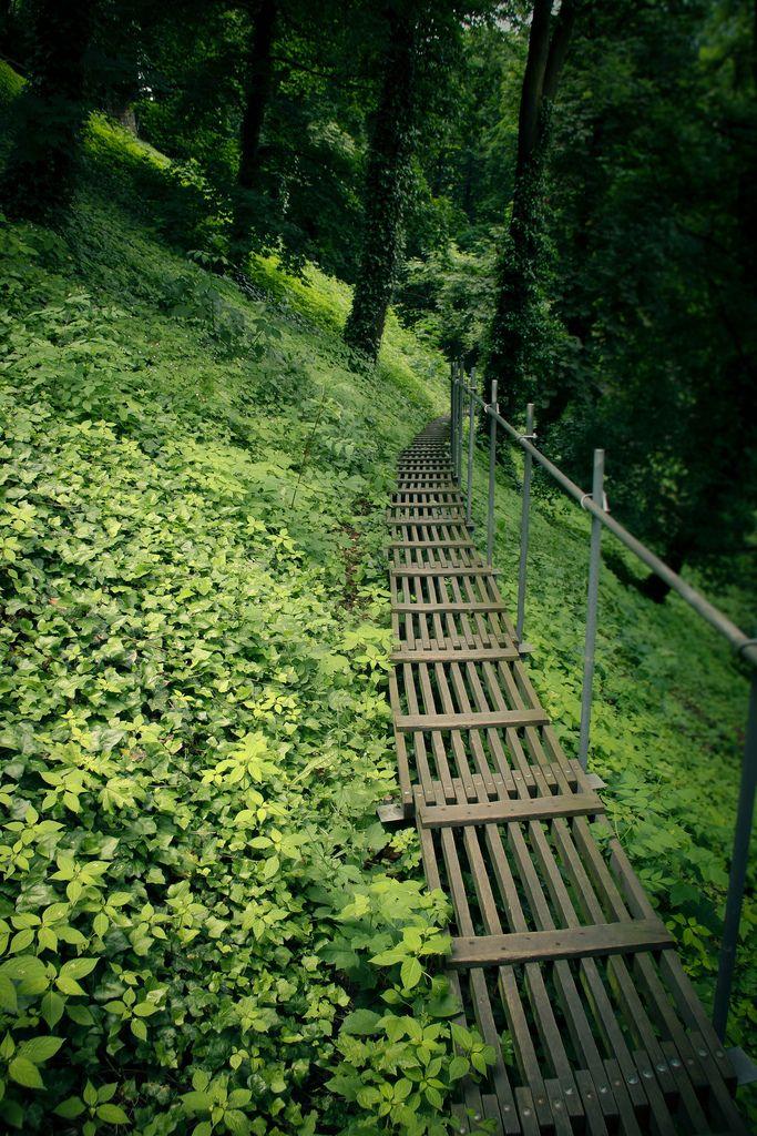 Green Footpath  Prauge, Czech Republic