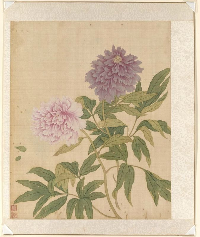 Herbaceous peony, from the flowers of the twelve months: April, Yun Bing (Chinese, 1670 - 1710), 1670-1710, Qing dynasty (1644-1911). Album leaf, Ink and colors on silk. Asian Art Museum, The Avery Brundage Collection, B65D49.b. Photo: © Asian Art Museum.