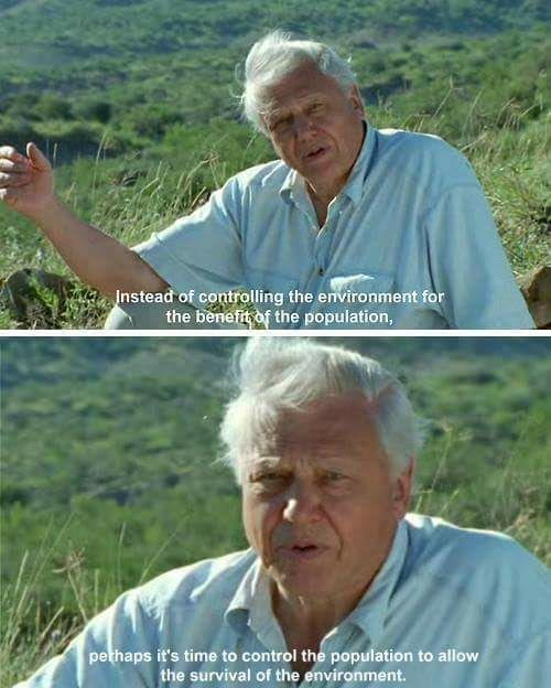 People will only appreciate this man once he is gone. Sir D. Attenborough (92)