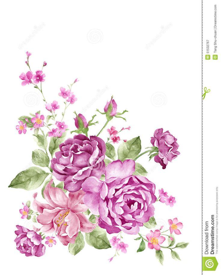 watercolor-illustration-flower-set-simple-white-background-51532767.jpg (1043×1300)