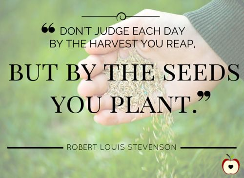 """""""Don't judge each day by the harvest you reap, but by the seeds you plant.""""  — Robert Louis Stevenson  10 Inspirational Quotes for Educators: https://www.teachervision.com/10-inspirational-quotes-for-educators/slideshow/76298.html?page=1&utm_content=buffer1122e&utm_medium=social&utm_source=pinterest.com&utm_campaign=buffer"""