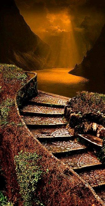 """""""In matters of climbing long staircases, how many stairs there are is not as important as how strong a will you have!"""" ― Mehmet Murat ildan"""