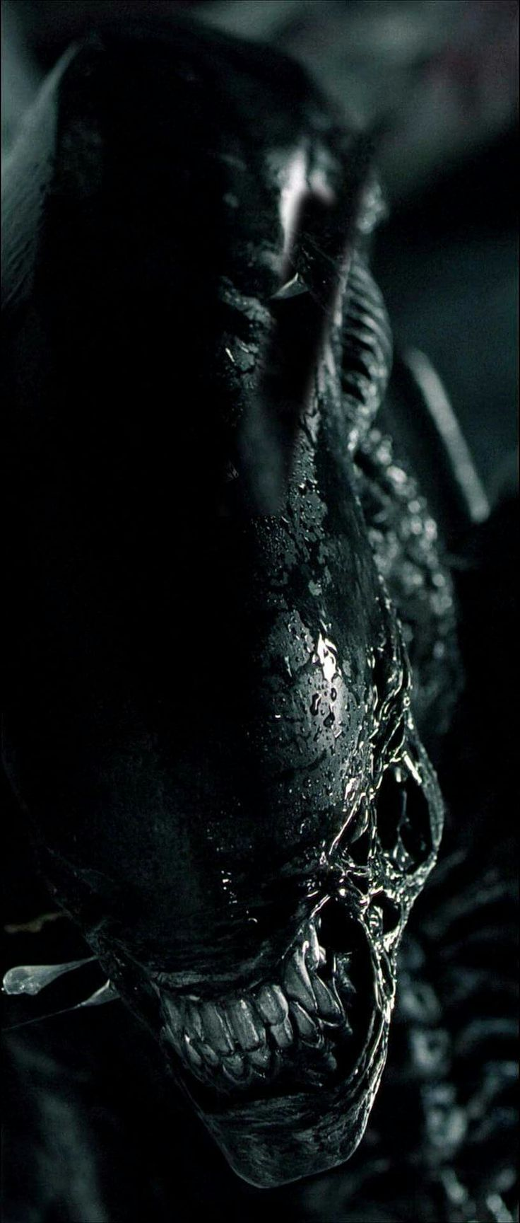 Xenomorph - The original H. R. Giger Alien. Some of the best movies of all time.