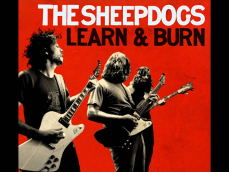 Sheepdogs learn and burn tpbi