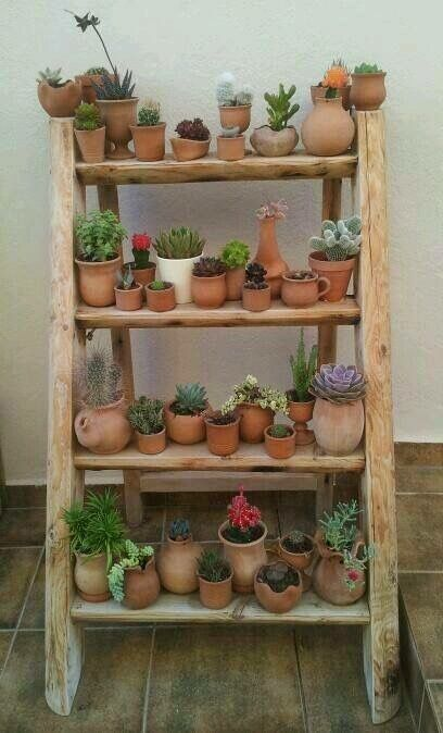 This is perfect for my latest gardening obsession...cactuses and succulents.  Planted in my own hand thrown pots, of course!