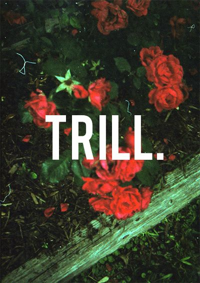 trill swag flowers - photo #4