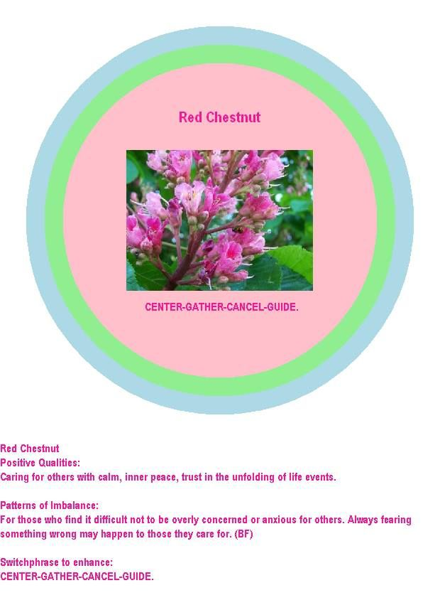 Red Chestnut Bach Flower Remedy  Red Chestnut Positive Qualities: Caring for others with calm, inner peace, trust in the unfolding of life events.  Patterns of Imbalance: For those who find it difficult not to be overly concerned or anxious for others. Always fearing something wrong may happen to those they care for. (BF)  Switchphrase to enhance: CENTER-GATHER-CANCEL-GUIDE.