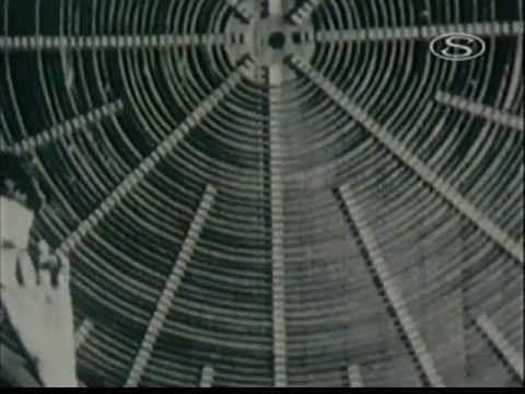 A titokzatos Tesla BBC 1982