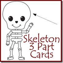 Skeleton Labeling 3 Part Cards