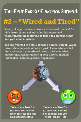 http://healthremedies.com/an_epidemic_of_stress.html An Epidemic of Stress- Learn How Stress Affects You And What To Do About It