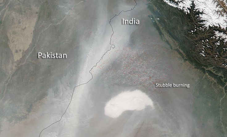 Every October sees a spike in air pollution in N India due to stubble burning. Ecoware converts stubble to food packaging #localsolutions
