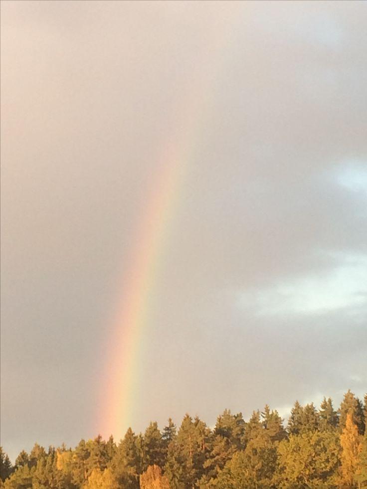 🌈✨ #sky #rainbow