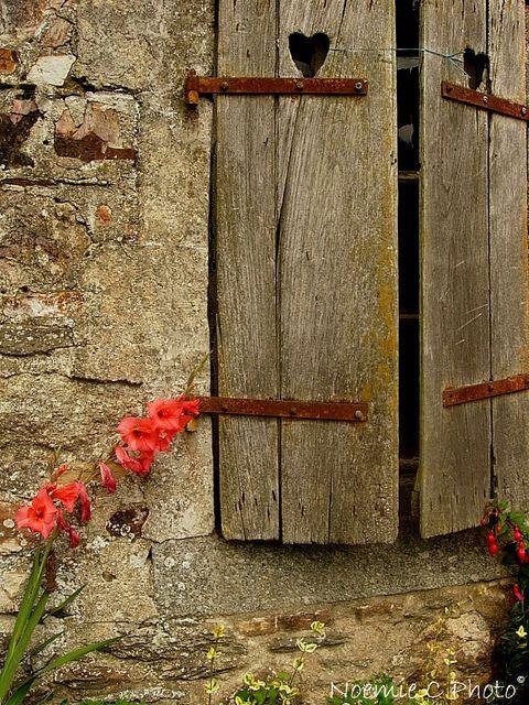 Best 25 Old Window Shutters Ideas On Pinterest The Shutter Old Shutters Decor And Window