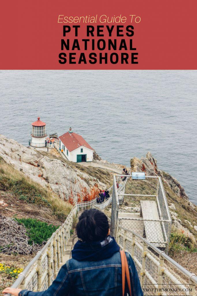 Pt Reyes National seashore lighthouse California