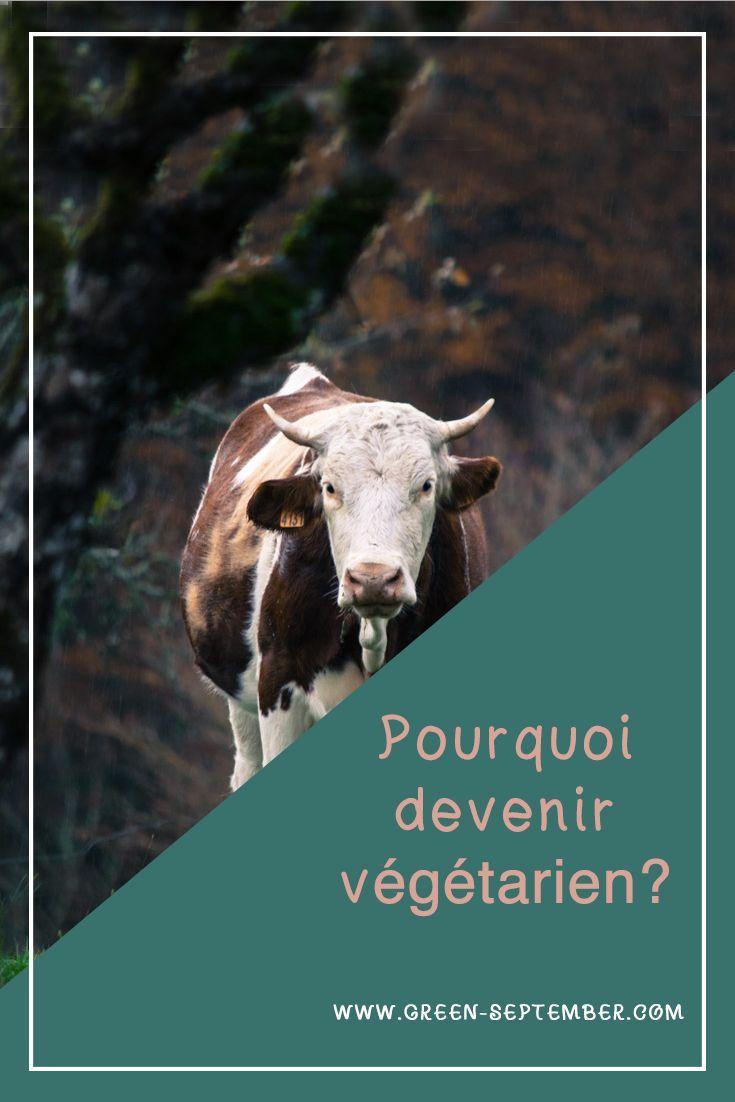 Pourquoi devenir végétarien Veggie