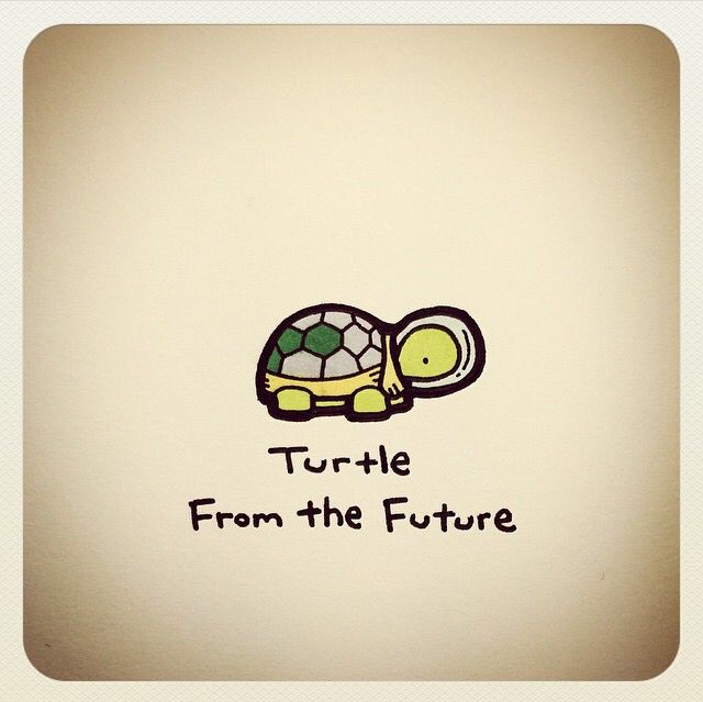 Turtle from the future