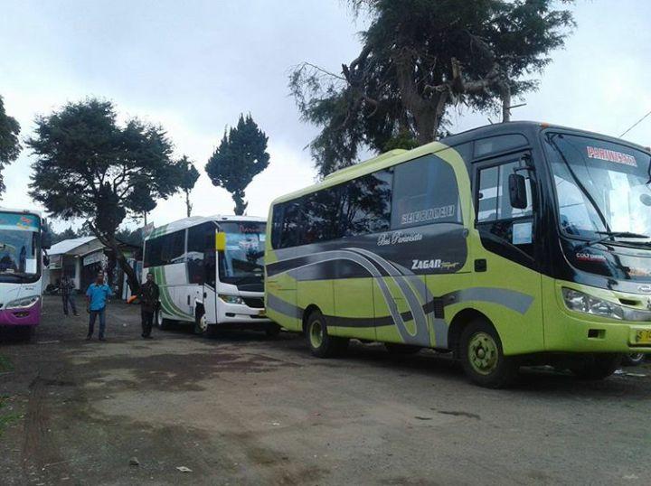 Sewa Bus Solo ke Dieng Harga Murah Telp. 082243439356 Mita Transport