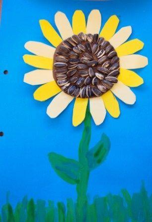 Con los alumnos se trabajarán las diferentes texturas. Se podrá realizar un girasol con cartulinas, pintura de dedos y pipas.