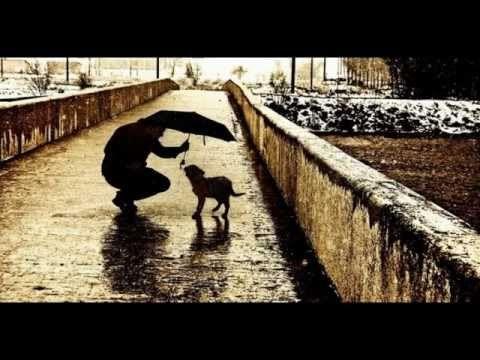 "Валентин Гафт.Стихотворение ""Пёс"". - YouTube"