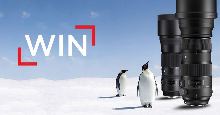 Antarctica Competition