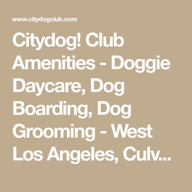 Citydog! Club Amenities - Doggie Daycare, Dog Boarding, Dog Grooming - West Los Angeles, Culver City, Seattle, Dallas and San Diego