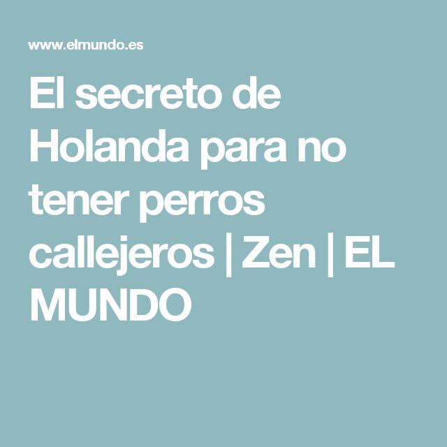 El secreto de Holanda para no tener perros callejeros   Zen   EL MUNDO