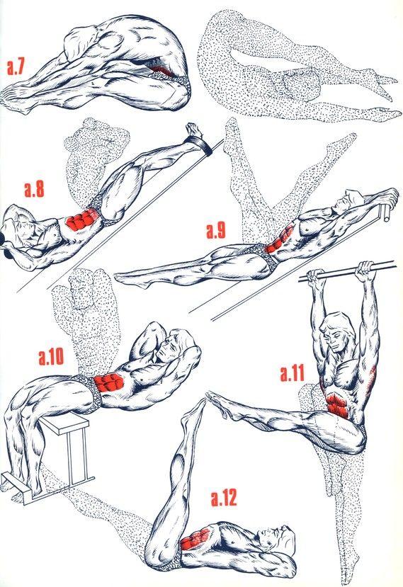 Exercices Abdominaux Obliques Comment avoir des abdos rapidement sur http://abdos-de-stars.astusites.com