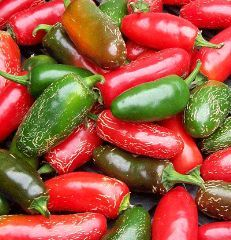 Receta Pique Boricua de Botella Puerto Rico: Growing Jalapeno Peppers, Gardens Ideas, How To Growing Peppers, Apple, Green Peppers, Puertorican Food, Jalapeno Chutneys, Salsa Spicy, Blessed Gardens