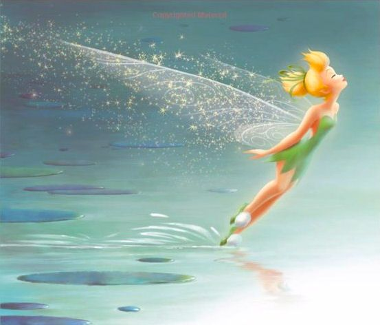 Those who wander are not always lost. Tinker bell, bells never land forest summer happy tinker fairy believe tinker aridessa