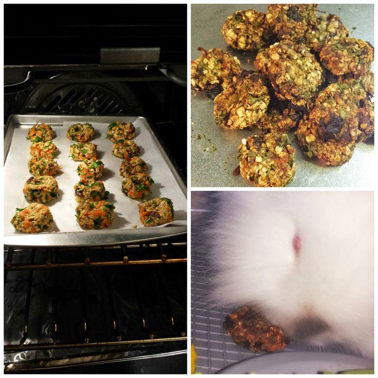 Happy Days Farm®: Homemade Rabbit Friendly Treats: Oatmeal Cookies