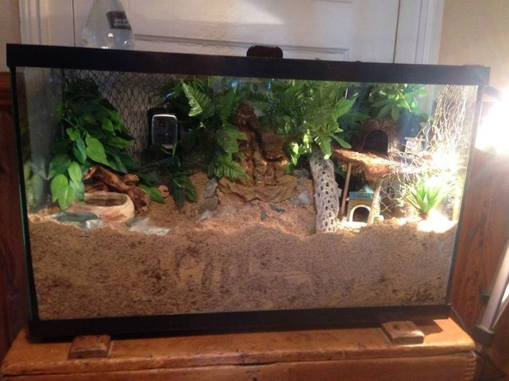 Here is my 29 gallon crabitat.  It has a waterfall in the middle.  To make it safe, I have it sitting on top of pottery to keep the sand from shifting and it stops the crabbies from tunneling under it.  Then the fall is sitting in a tupperware bowl with big rocks surrounding it so the crabs can't tunnel in the bowl.  Nice thick substrate made from play sand and Eco Earth = happy crabbies.   http://mydestinysharinghope.com