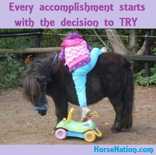 good pony