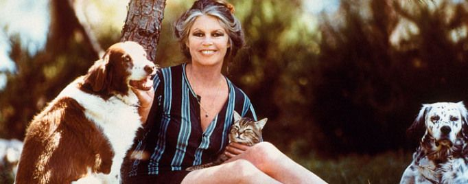 80 Years of Brigitte Bardot   Petite Rainbow Read my article here: www.lettyrydell.com