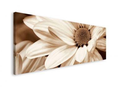 Flowers in Mauve - obraz na płótnie