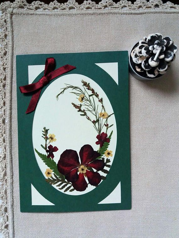 Pressed flower Christmas card. Christmas color card. Floral