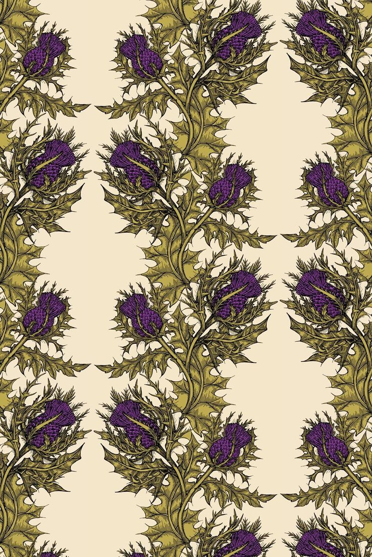 Timorous Beasties Wallcoverings - Grand Thistle Hand-Print