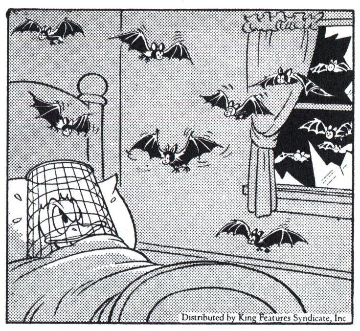 Donald Duck Newspaper comic by Al Taliaferro. | Al Taliaferro (1905 ...
