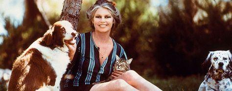 Today the 28th, Birthday of Brigitte Bardot. Wish her on Twitter at @brigitte_bardot . Visit her Fondation Brigitte Bardot for animals.