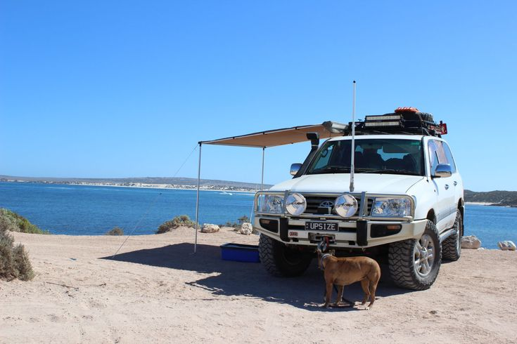 Not a bad spot for a picnic lunch!  #travel #dogs #beach #picnic #view #southaustralia #seeaustralia
