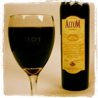 Vino TerraMater, muy buen vino chileno